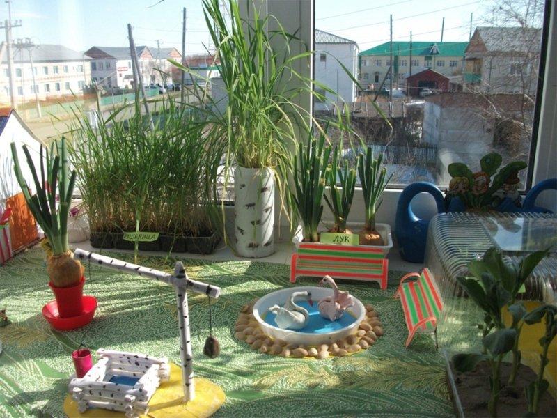 дневник наблюдений за огородом в детском саду образец - фото 11
